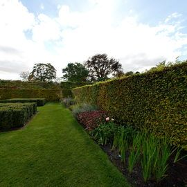 Scampston Hall - The Walled Garden